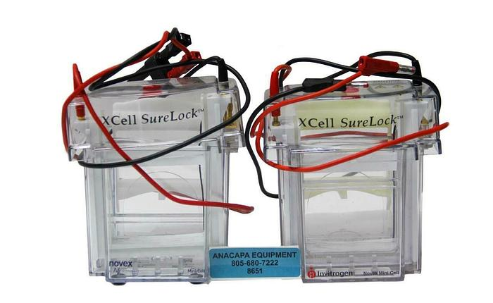 Used Invitrogen XCell SureLock Novex Mini-Cell Electrophoresis System Lot of 2 (8651)