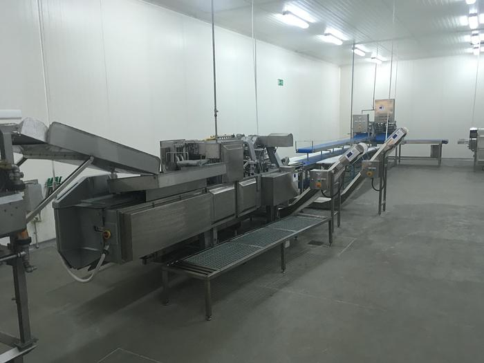 Used BAADER, CARNITECH, MULTIVAC, Fomaco, Salmon processing line
