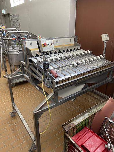 Gebraucht gebr. Sortier- und Kalibriermaschine mit 12 Kanälen, für das Sortierband.