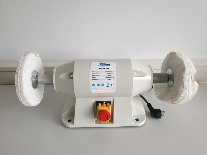 WG200P - Rogi polishing machine