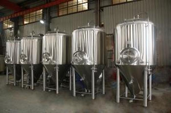 New Stock - BSV 20 bbl Fermenter