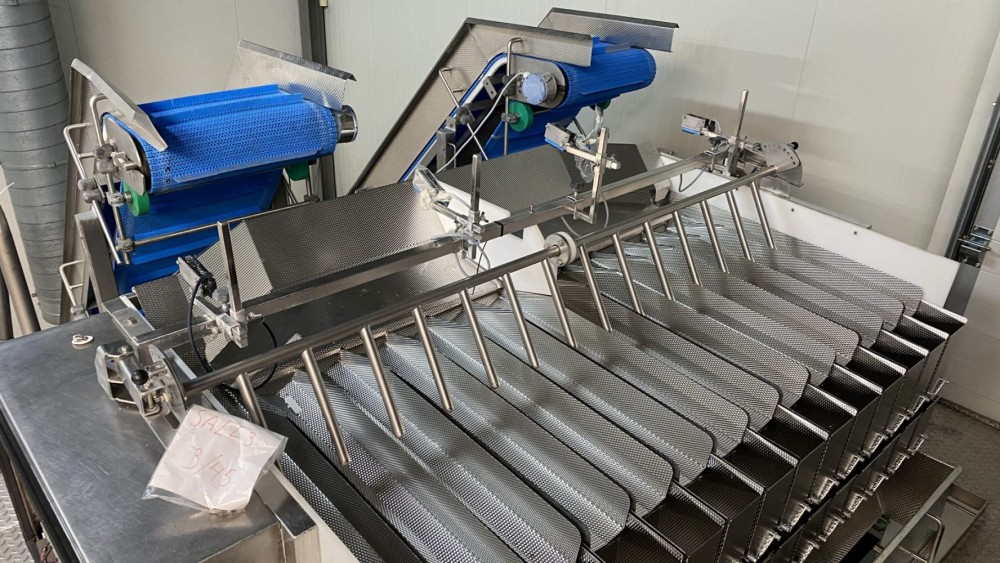 Used Newtec 14 channel weighing line