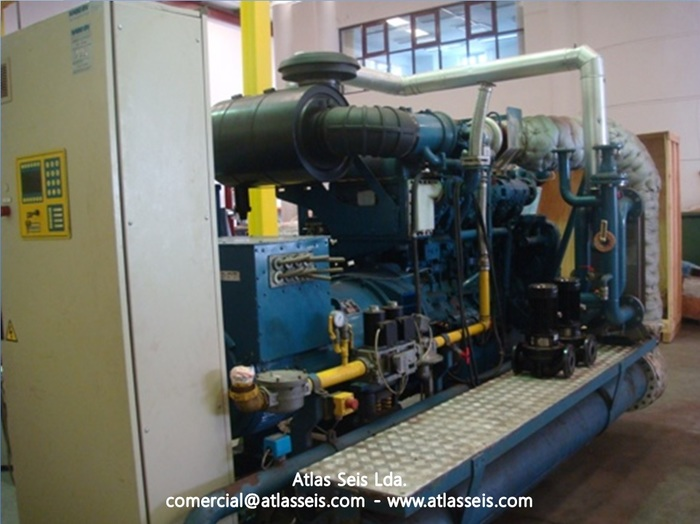 260 kW Gas Power Plant Guascor SFGLD 180