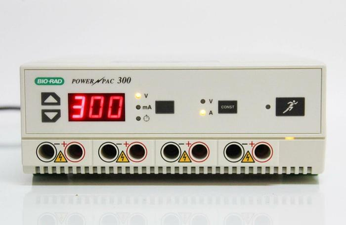 Used Bio-Rad PowerPac 300 Electrophoresis Power Supply 120V (4587)
