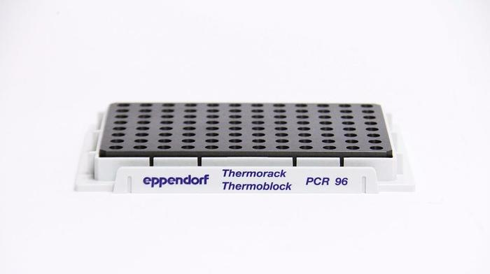 Used Eppendorf PCR 96 Thermorack Thermoblock (2759)