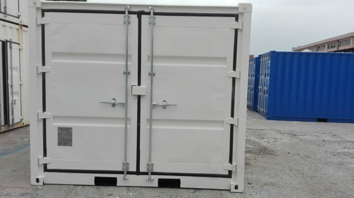 """10 'Container Full Side Access 8'6 """""""
