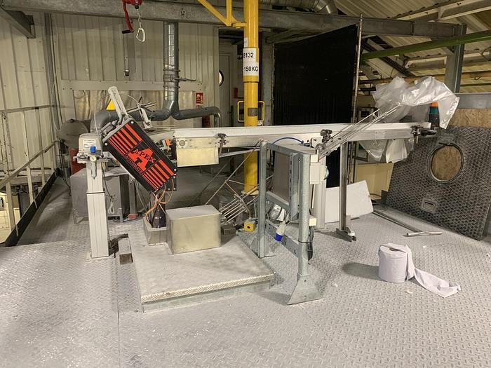 Used 2007 APEX AUTOMATE DPSP Feed Conveyor