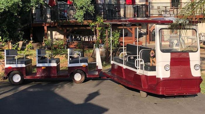 Used Taylor Dunn Tram - 19 Passenger