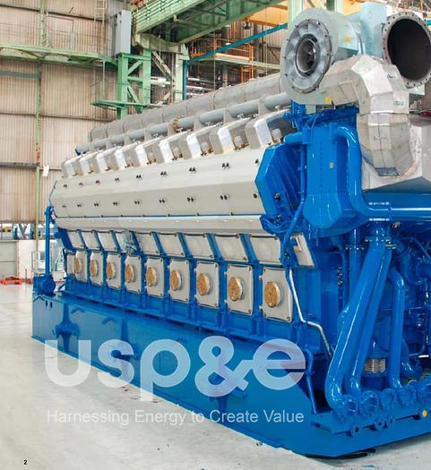 Used 17 MW 2013 New Wartsila 18V50DF Natural Gas/HFO/LFO Generator