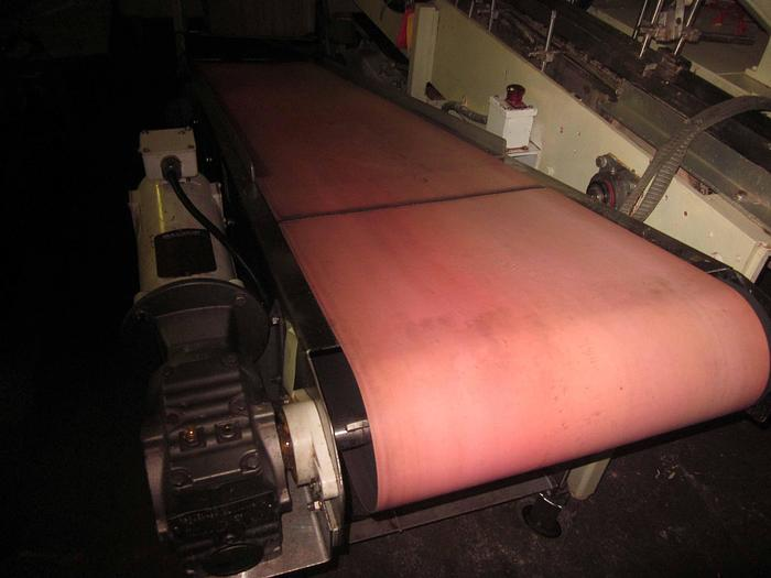 "INCLINE CONVEYOR 18""W X 90""L"