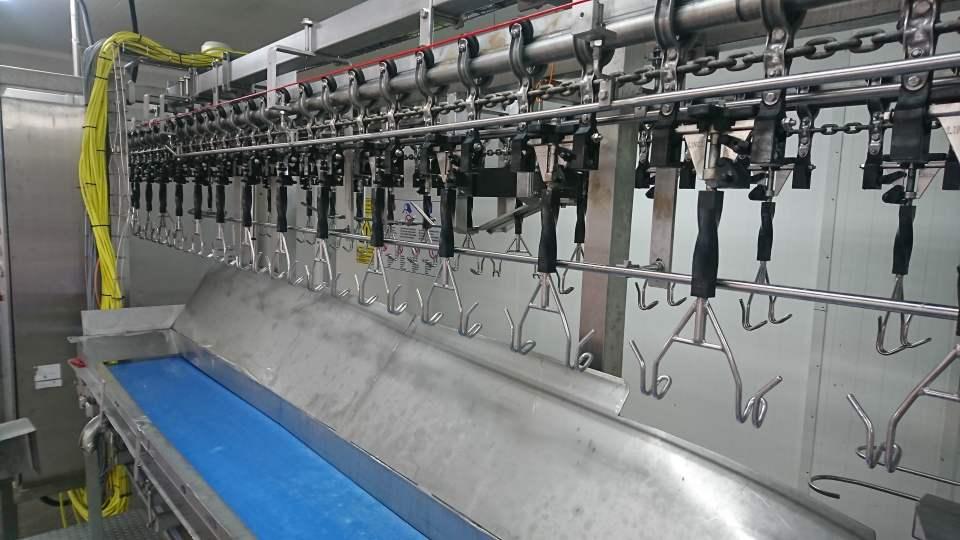 ProFlex Cut-up line Linco