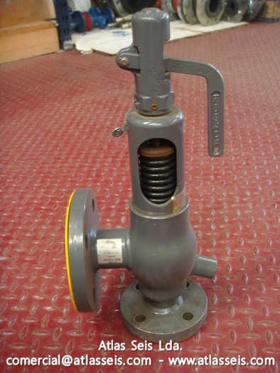 Tosaca Safety and Relief Valve 1400